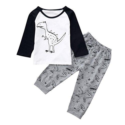 Hunzed Toddler Infant Baby Outfits Set, Girls Boys Cartoon Dinosaur Tops T-Shirt+Pants (6M, ()