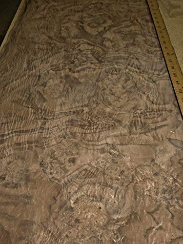Walnut Burl wood veneer 18