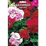 Vivai Le Georgiche Geranio Zonale (Semente)