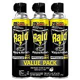 Raid Wasp & Hornet Killer, 14 Ounce