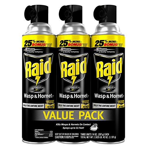 raid-wasp-hornet-killer-14-ounce
