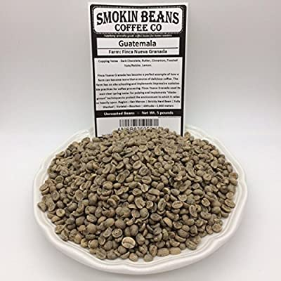 5 LBS – GUATEMALA (no burlap bag) FRESH NEW-CROP - Specialty-Grade Green Unroasted Coffee Beans – CENTRAL AMERICA – Varietal Bourbon – Is Perfect Example of Sustainable Farming Practices – Shade-Grown
