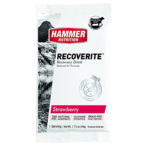 Hammer Nutrition Recoverite Recovery Fuel, Flavor Strawberry (6 Count of Single Packets)