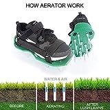 LEDTEEM Lawn Aerator Shoes with Hook & Loop