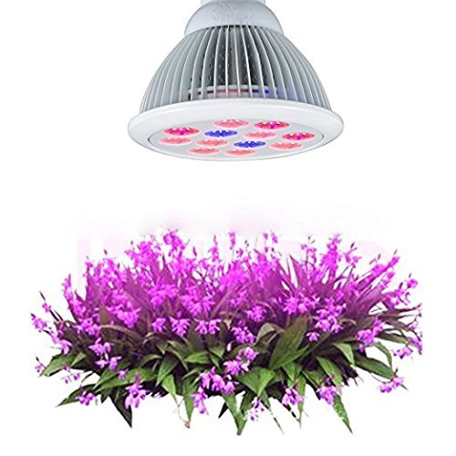 California Light Works Solar Storm 880w LED Grow Light UVB & Free Ratchet Hangers