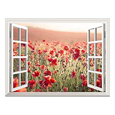 Wallpaper Large Wall Mural Series ( Beautiful Poppy)...