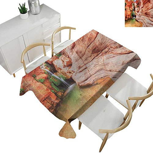 (Americana,Decor Collection Table Cloths Elves Chasm Colorado River Plateau Creek Grand Canyon Image Print Rectangle Tablecloth Dinner Picnic Scarlet Green Light Brown 60