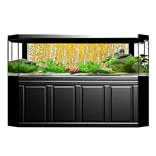 (UHOO2018 Background Fish Tank Sticker Decor Autumn Birch Forest Golden Leaves Seasonally Scenics Picture Print Accessories PVC Paper Cling Decals Sticker 29.5