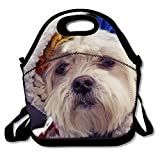 Dressed Dog Lunch Bag Lunch Box Tote Washable Insulated Waterproof for Men Women Kids