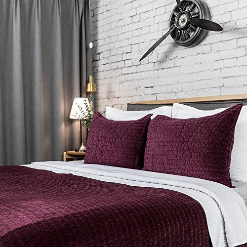 (Elegant Life All Season Super Soft Royal Velvet Bed Quilt, Twin (68
