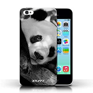 KOBALT? Protective Hard Back Phone Case / Cover for Apple iphone 5s | Panda Bear Design | Mono Zoo Animals Collection