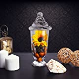 """CYS EXCEL Candy Jar, Apothecary Jars, Apothecary Candy Buffet Jar. (H:13"""" Open:4.25"""")"""