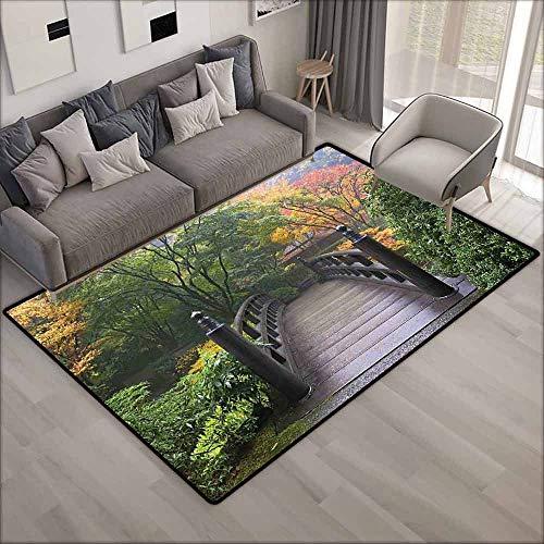 Indoor/Outdoor Rug,Nature,Anti-Slip Doormat Footpad Machine Washable,5'6