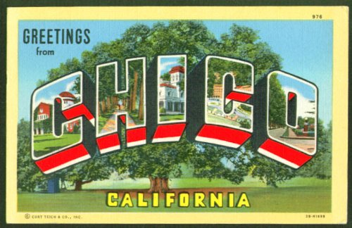 Greetings from CHICO California CA large letter postcard 1940s