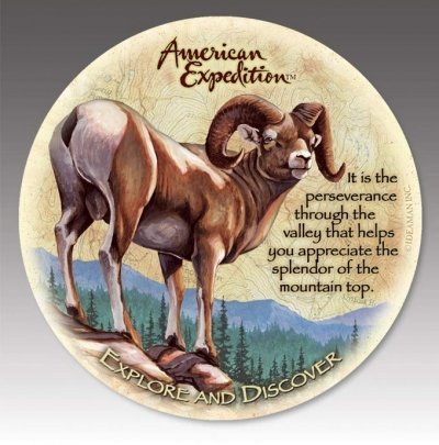 (American Expedition CTST-146 Stone Coaster - Bighorn Sheep -Set Of 4)