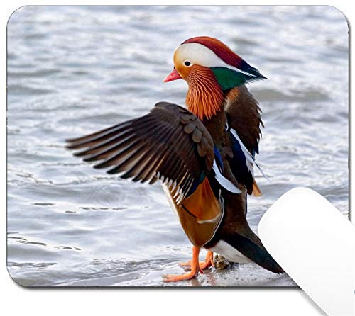 MSD Mouse Pad with Design - Non-Slip Gaming Mouse Pad - Image 10819554 Mandarin Duck