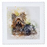 3dRose Sven Herkenrath Animal - Watercolor Dog Portrait - 22x22 inch quilt square (qs_280291_9)
