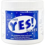 GANE. ADH0901 Yes All-Purpose Stik Flat Glue, 1-Pint (Limited Edition)