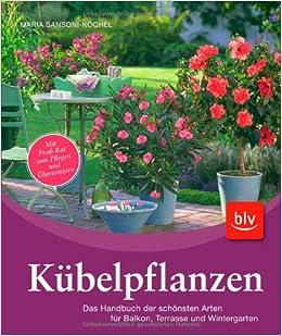 Kübelpflanzen: Das Handbuch der schönsten Arten für Balkon, Terrasse ...