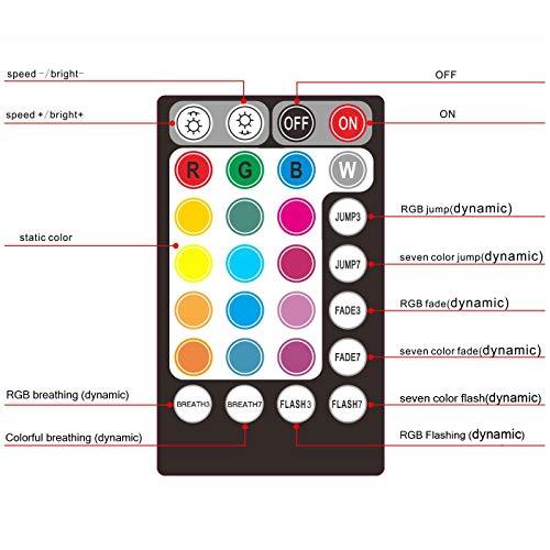 Car use DC12V 6W RGB LED Plastic Fiber Optic Star Ceiling Kit Light 100pcs 0.03in 6.5ft +18key Remote Optical Fiber Lights Engine by CHINLY (Image #3)