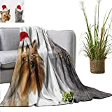 Christmas Super Soft BlanketsAdorable Cat and Dog with Xmas Hats Domestic Pet Animals Holiday Celebration All Season Light Weight Living Room 71'' Wx93 L Orange Grey Red