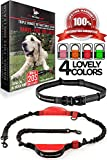 Hands Free Dog Leash - For One/Two Medium to Large Dogs (up to 150lbs) - Walking/Hiking/Dog Training - Heavy Duty Extra Long Bungee Dog Leash - Reflective Waist Leashes for Dogs (One Dog, Black & Red)