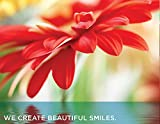 Practicon 517006 Create Beautiful Smiles Practicare Postcard (Pack of 200)