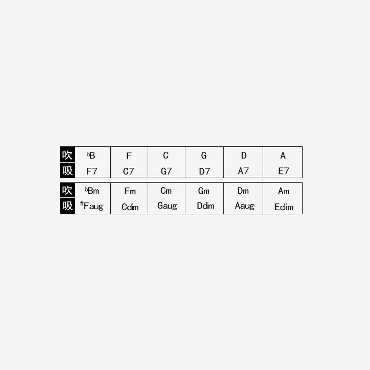 TONGBOSHI Armónica, armónica de 24 acordes, armónica for bajo de ...