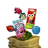My Little Sweet Pea Deluxe Bathtub Squirter Toy AssDrortment with Original Mr Bubble Bath Crackles and Bath Color Drops Gift Set