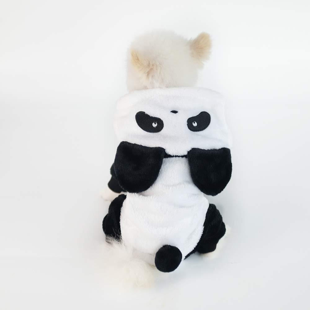 Amazon.com: InnoPet - Disfraz de Halloween para mascotas ...