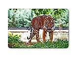 Animal Tiger Doormat Entrance Mat Floor Mat Rug Indoor Front Door Bathroom Mats Rubber Non Slip) 23.6''x15.7'',L x W