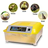 Benlet Egg Incubators Hatcher, 48 Egg Hatching Incubator for Chicken Duck Goose Quail Turkey Tuttle Birds Fertilized Poultry Eggs Hatcher Auto-Turning [US Store]
