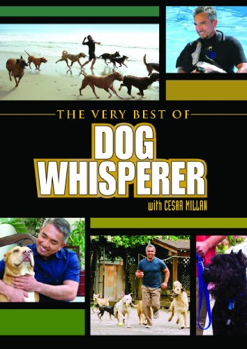 Dog Whisperer: The Very Best - The Whisperer Dog Cesar Millan