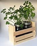 Cheap Herb Garden Duo-Great for Growing an Indoor Herb Garden, Includes Everything You Need to Grow a Herb Garden (Cilantro, Basil, Parsley) in a Simple Pine Container