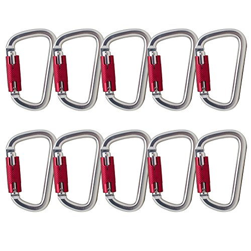 Fusion Climb Swift Auto Lock Modified D Shape Carabiner Second Generation 10-Pack by Fusion Climb