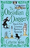 Front cover for the book The Obsidian Dagger: Being the Further Extraordinary Adventures of Horatio Lyle by Catherine Webb