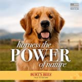 Burt's Bees for Pets for Dogs All-Natural Paw