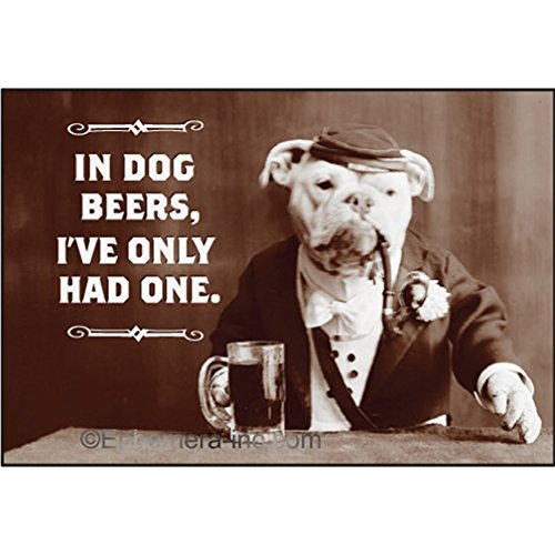 In dog beers, I've only had one. - RECTANGLE MAGNET