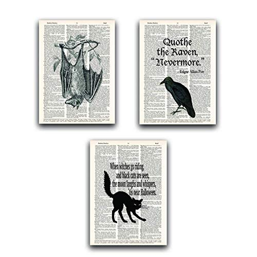 Halloween Decoration Value Pack (Set of 3), Dictionary