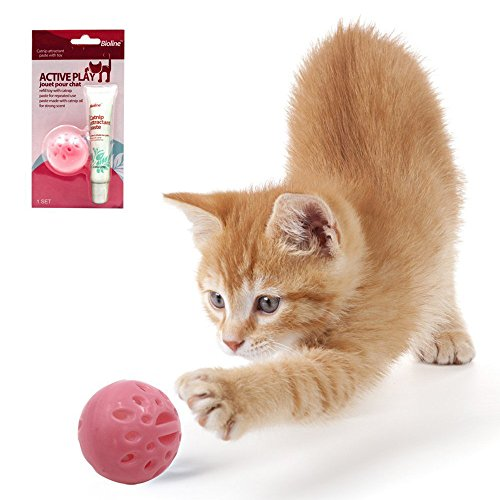 Hot Cats Catnip Toys (Cat Toys with Catnip Paste for Repeated Use,Catnip Toys for Cats)
