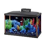 AQUEON 100117819 Neoglow Led Aquarium Kit 10 Gallon Orange Rectangle Style