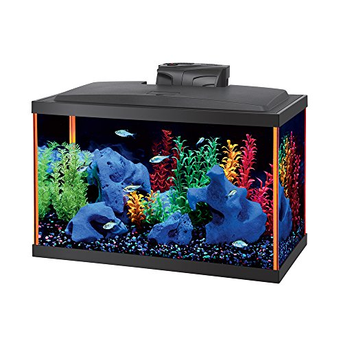 Aqueon Neoglow Aquarium Kit Rectangle by Laco/1925
