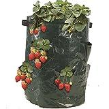 Best Garden Tools strawberry grow bag,Gardening Flower Pot Planting Bag Living Indoor Wall Planter garden tool