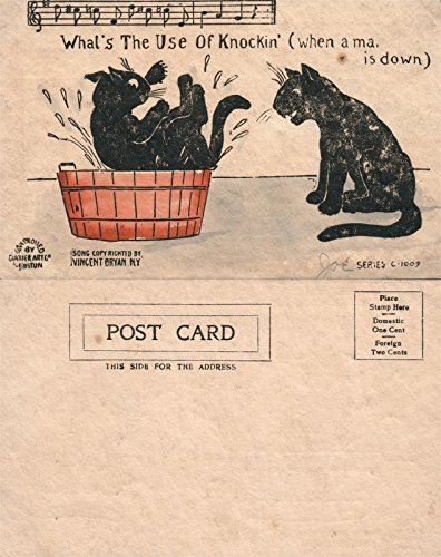 (BATHING BLACK CATS UNDIVIDED ANTIQUE POSTCARD)
