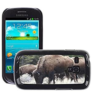 Hot Style Cell Phone PC Hard Case Cover // M00117296 Bison Buffalo Yellowstone Animal // Samsung Galaxy S3 MINI i8190