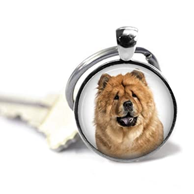 Amazon com: Goodnight cat Chow Dog's Photo on a Keychain
