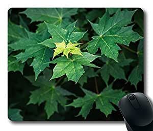 Maple Leaves Summer Mouse Pad Desktop Laptop Mousepads Comfortable Office Mouse Pad Mat Cute Gaming Mouse Pad