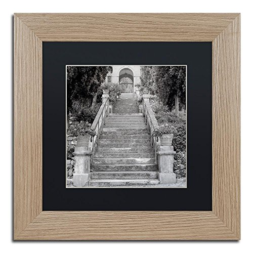 Liguria II by Alan Blaustein, Black Matte, Birch Frame 11x11-Inch - Montreux Swivel