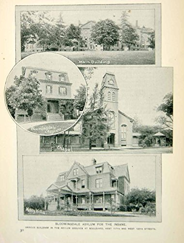 1893 Print Bloomingdale Insane Asylum Macy Villa Chapel NYC Historic Image NY2A - Original Halftone - Macys Bloomingdale