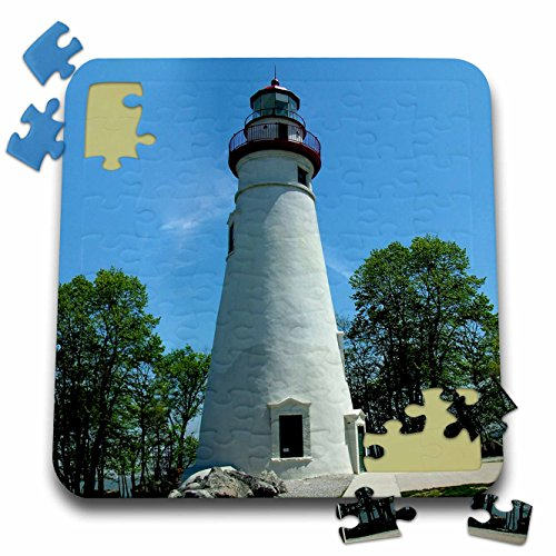 Sandy Mertens Ohio - Marblehead Lighthouse Looking Over Lake Erie - 10x10 Inch Puzzle (pzl_61708_2)